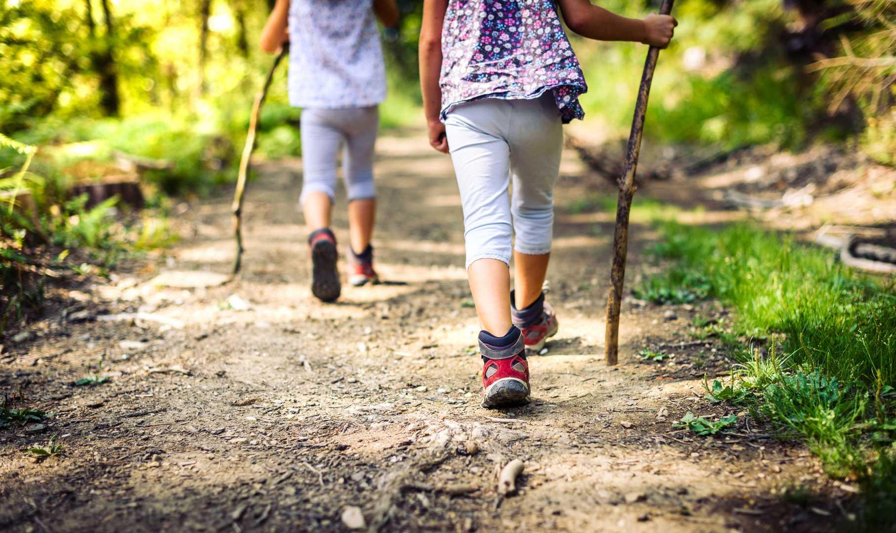 zwei Kinder wandern im Wald mit Wanderstock