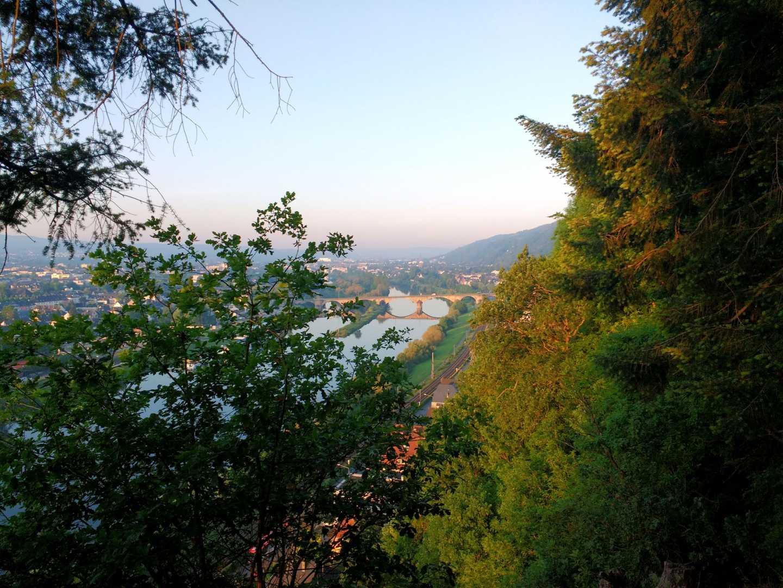 Blick vom Wald über eine Stadt