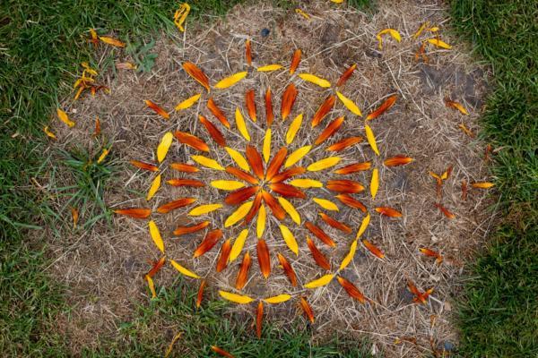Natur Mandala