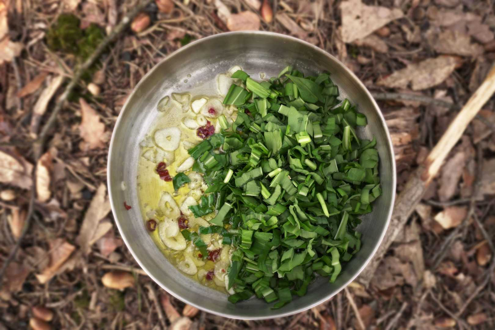 Kochtopf mit Bärlauch, Knoblauch, Chili und Öl im Wald