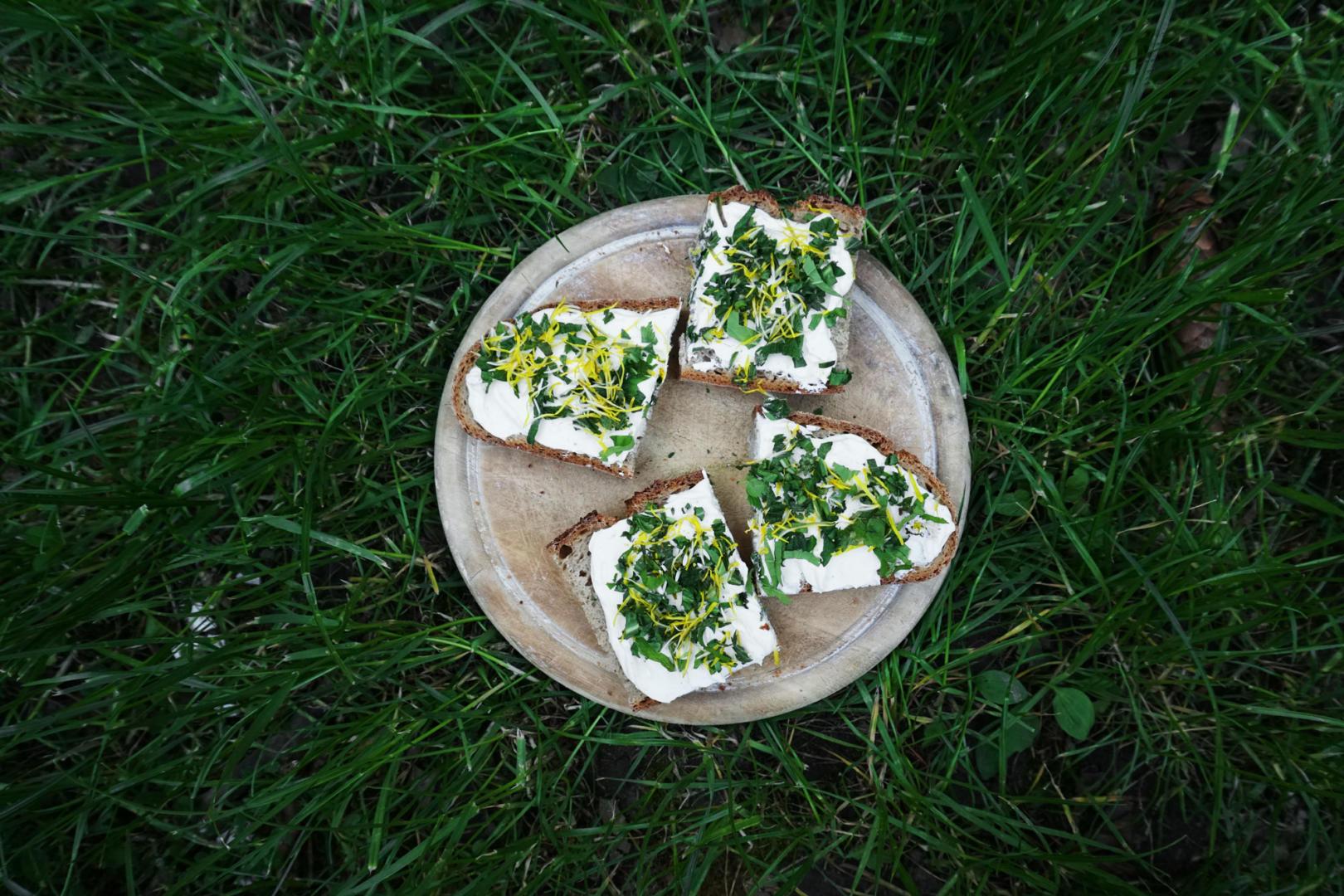 Wildkräuter-Brote im Gras