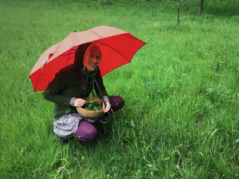 Frau sammelt Wildkräuter im Regen