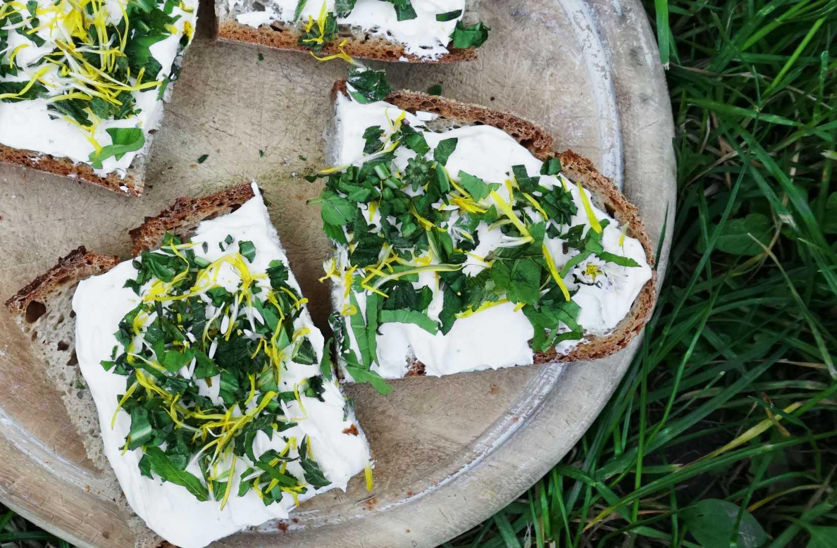 Brote mit Wildkräuterquark