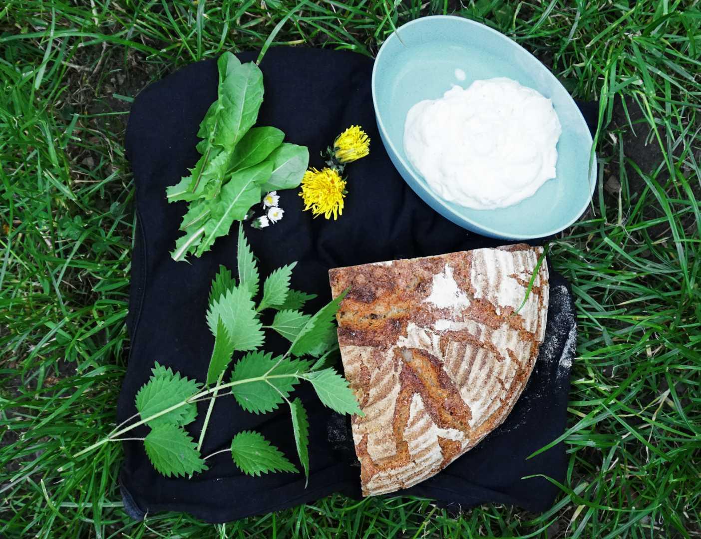 Wildkräuter, Quark, Brot auf Wiese