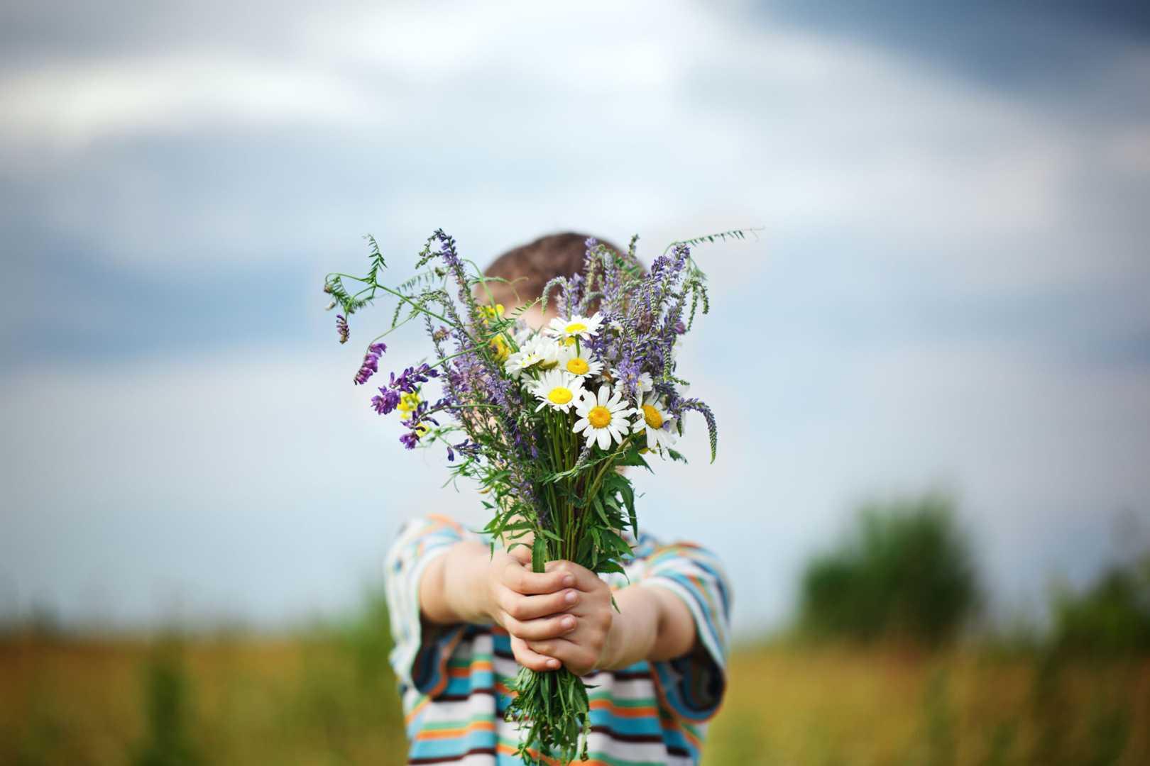 Kleiner Junge in einer Wiese mit Wildblumenstraß in der Hand