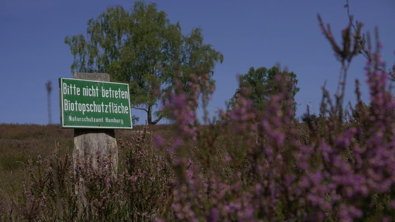 """Landschaft mit Schild: """"Bitte nicht betreten. Biotopschutzfläche"""""""