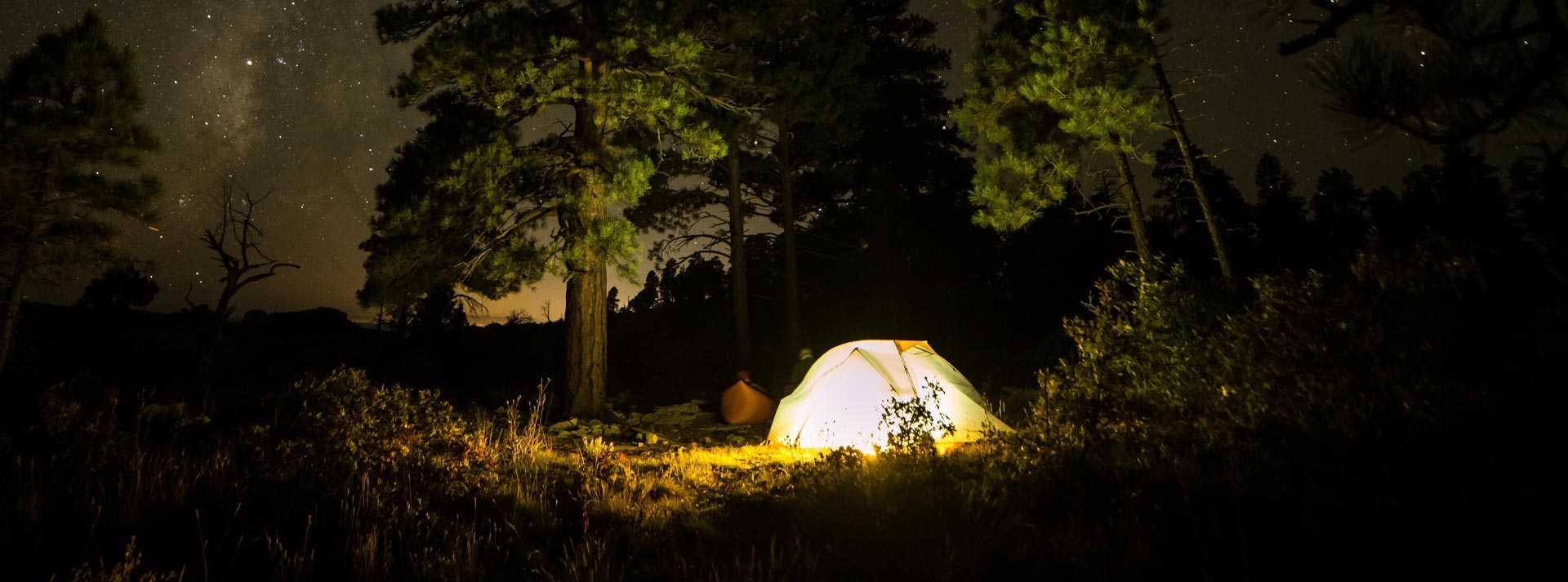 Zelt nachts im Wald