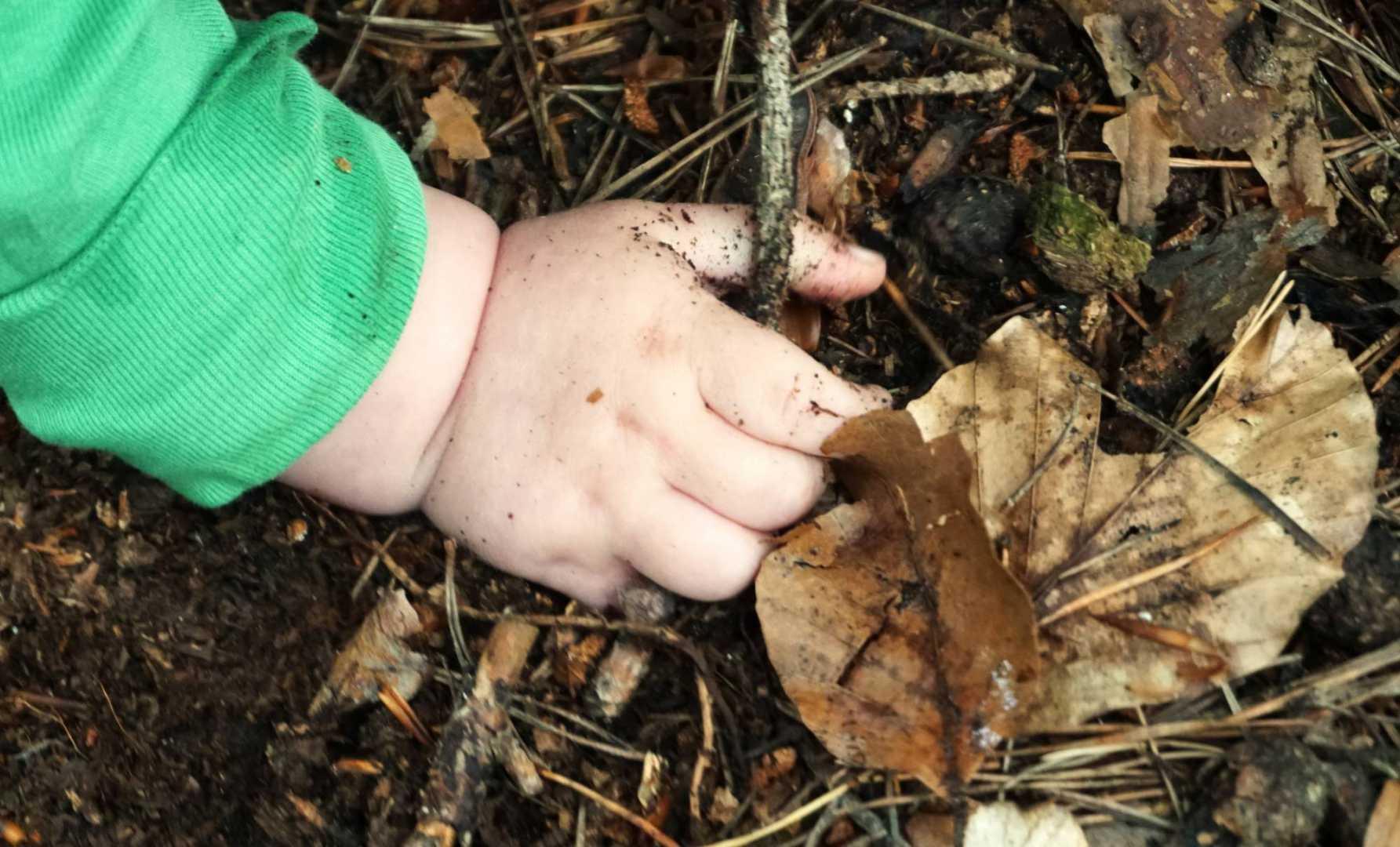 Babyhand auf dem Waldboden