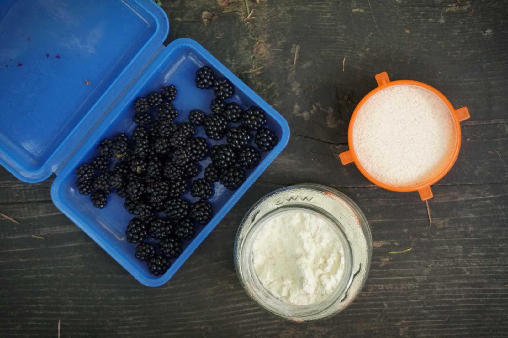 Die Grundzutaten für den Griesbrei mit Brombeeren: Brombeeren, Bio-Milchpulver, weichweizengries
