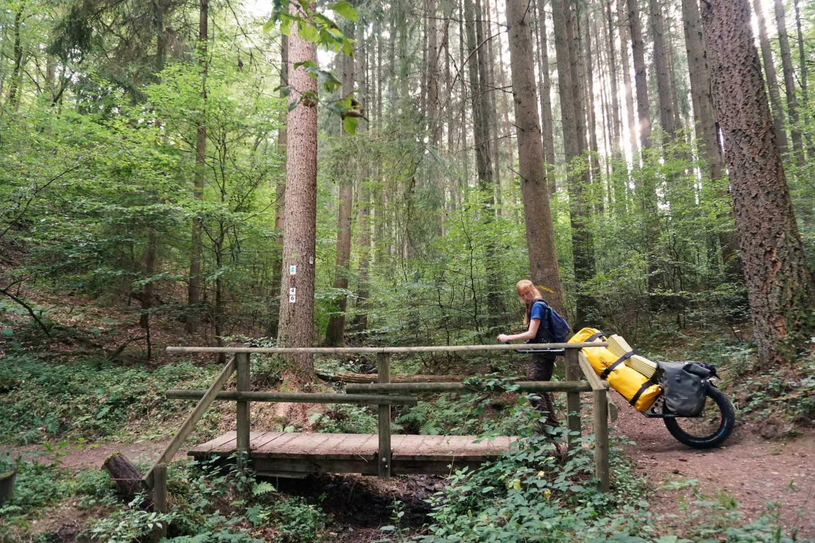 Jana mit Monowalker auf Brücke im Wald