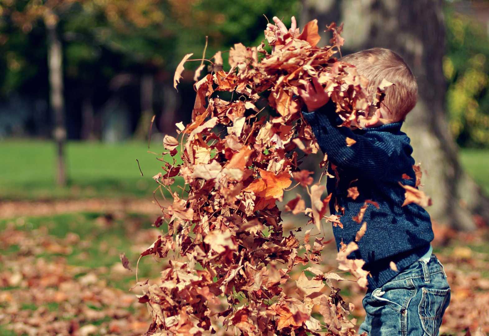 Junge wirft Herbstblätter in die Luft