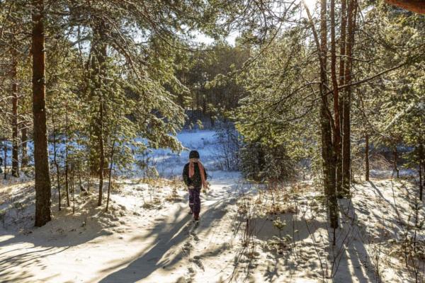 Kind Februar Wald Schnee