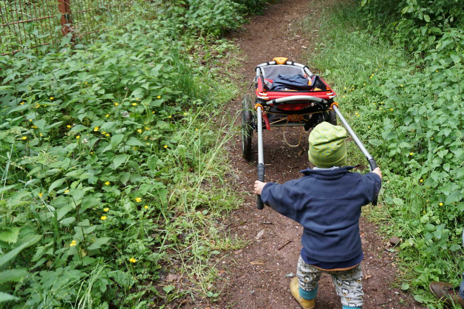 Kind schiebt den Hike Kid Offroad Kinderwagen durch den Wald