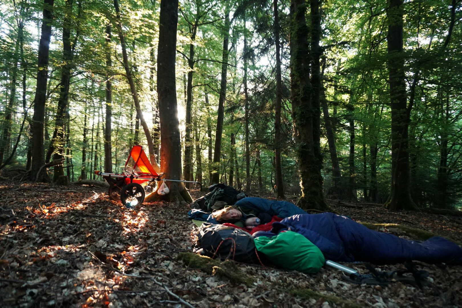 Nachtlager im Wald mit Hike Kid im Hintergrund